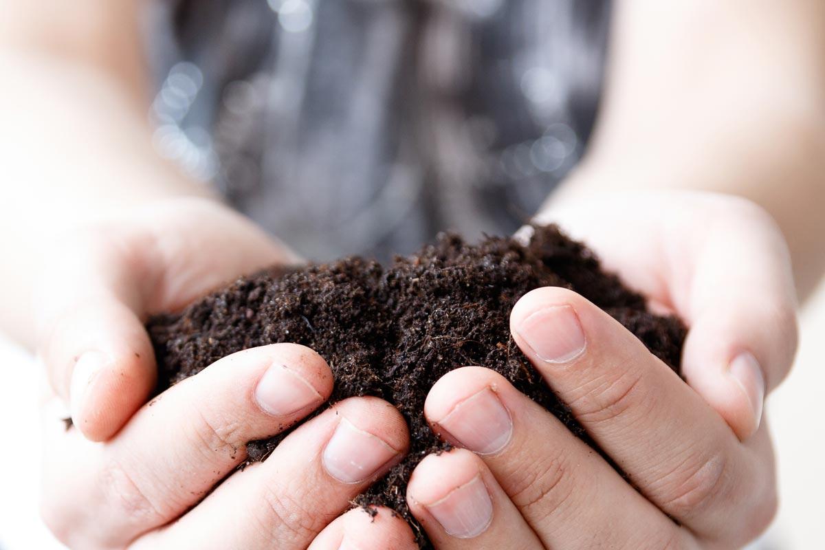 Réunion publique de compostage